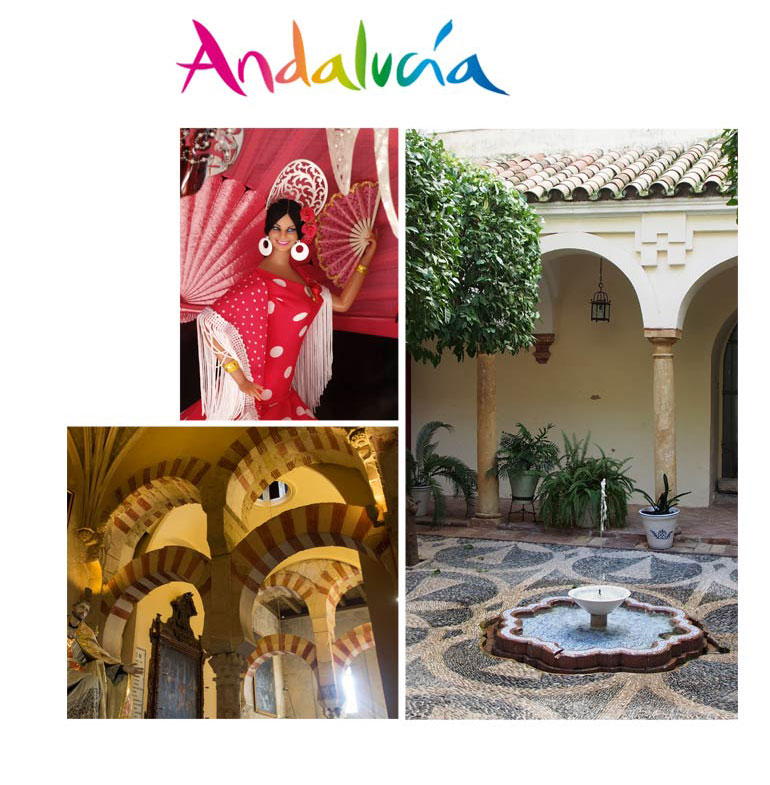 The region of Andalusia MIPSS 2018